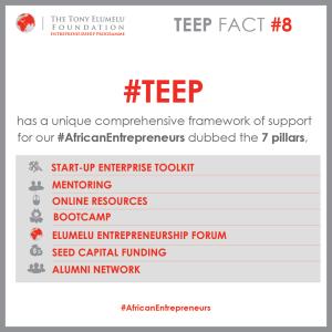 8-TEEP-FACT-7pillars